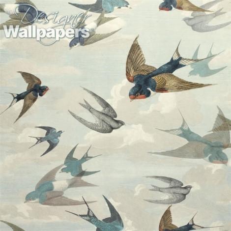 Chimney swallows