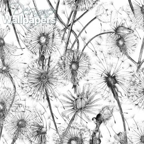 Dandelions Designer
