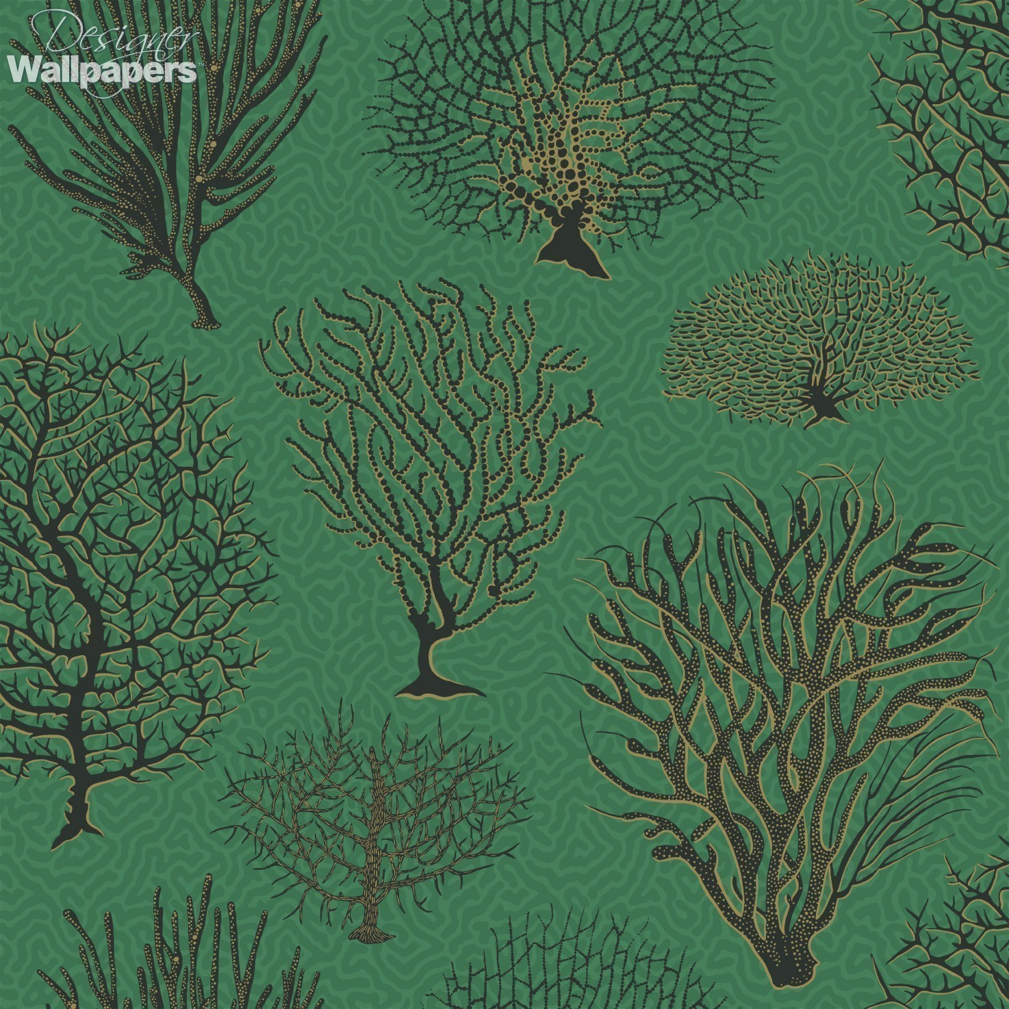 Buy cole and son seafern free next day delivery for Purchase wallpaper