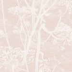 Cow Parsley - Pink & Purple Wallpaper