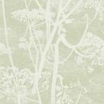 Cow Parsley - Green Wallpaper