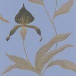 Orchid - Aqua & Blue Wallpaper