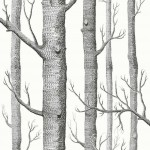 Woods Fabrics - White