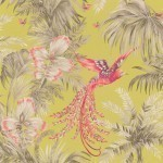 Bird of Paradise - Yellow Wallpaper