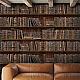 Book Shelves (WP20112)