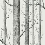 Woods - Black & White Wallpaper