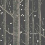 Woods & Stars - Grey Wallpaper